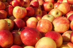 Product of the month: apples
