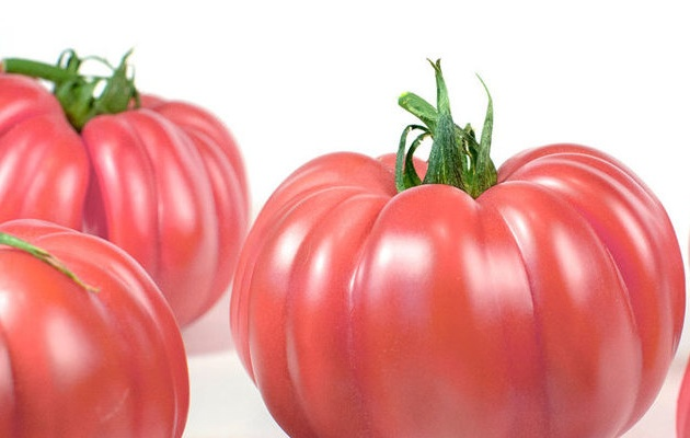 Staay Food Group exclusive supplier MonteRosa tomato.