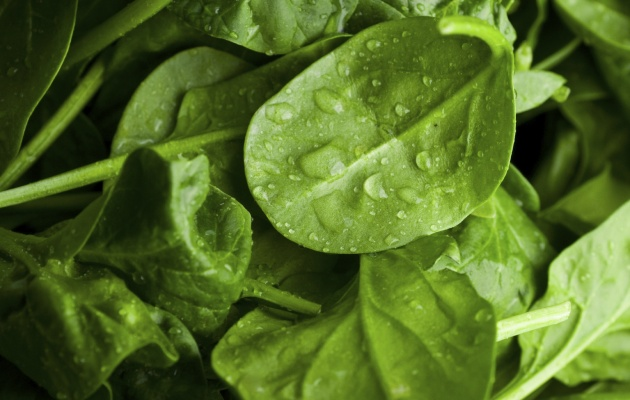 Product of the month: spinach.