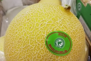 First Brazilian melons available.