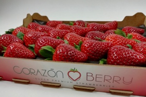 New and exclusive premium strawberry offer.